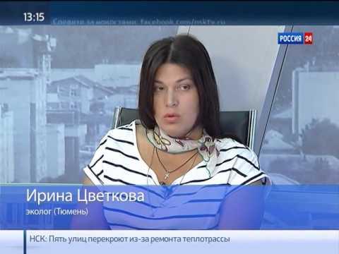 В России вступает в силу новый закон об утилизации