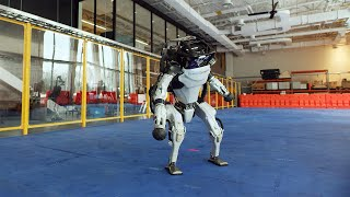 Do You Love Me Robot Dance Video
