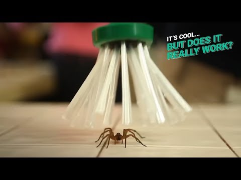 Spider Catcher | It's Cool, But Does It Really Work?