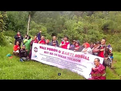 Wali Pohon dan Bakti Sosial HUT Ke-16 Sekar Telkom & TMCC di Kareumbi