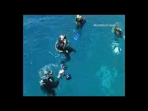 Mit der Highlights ab in den Norden des Roten Meeres, Rotes Meer allgemein,Ägypten