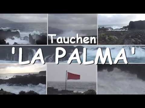 Tauchen La Palma, Playa Nueva, Kanarische Inseln/La Palma/Playa Nueva (Los Guirres),Spanien