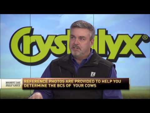 RFDTV MDR On Set with Mark Robbins