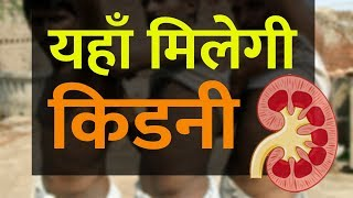 Function of Kidney in Human Body in Hindi | Location of Kidney | Structure of The Kidney
