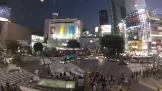 preview picture of video 'A week in Tokyo (our holiday in Japan - 2013)'