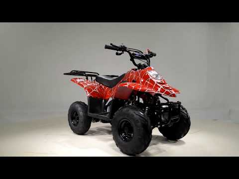 2017 Tao Motor 110cc Back Rack in Jacksonville, Florida - Video 1