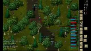 Ultima Online Guardians of Destiny Chicken Domination