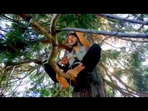 Michele, sull'albero per protesta