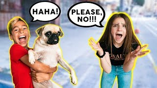 YOU WON'T BELIEVE WHAT I DID! **PRANK ON PIPER ROCKELLE** | The Royalty Family