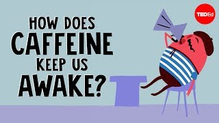 How Does Caffeine Keep Us Awake?
