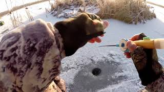 Зимняя ловля ротана на озере
