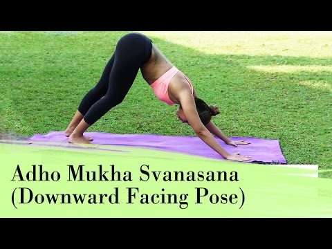 , title : 'Yoga Asana - Adho Mukha Svanasana (Downward Facing Dog Pose) - Relieves Stress & Depression'