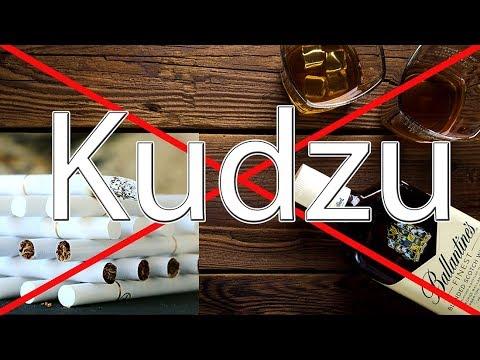Mit Kudzu Sucht los werden u. heilen | Alkohol | Nikotin | Zuckersucht | Depressionen
