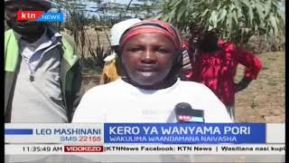 Wakulima Naivasha waandama kulalamikia uharibifu wa wanyama pori kwa kuvamia na kuaribu mashamba zao