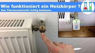 Wie funktioniert ein Heizungs- Thermostat? Wie muss ich den Heizkörper einstellen / bedienen?