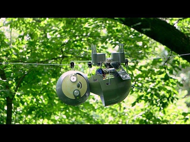 Робот-ленивец SlothBot займется неторопливым исследованием джунглей нашей планеты