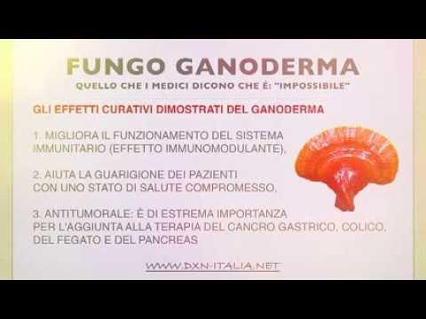 Come trattare un fungo a diabete