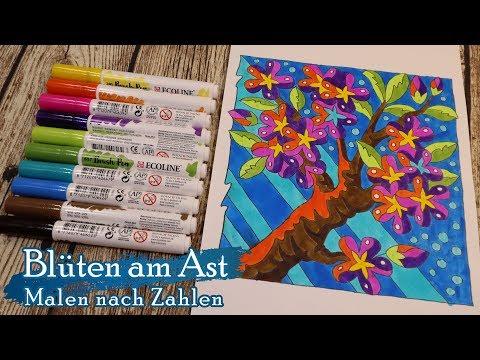 Blüten am Ast - Malen Nach Zahlen - Speed Paint