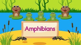 Amphibian Song (LEARN ABOUT AMPHIBIANS)