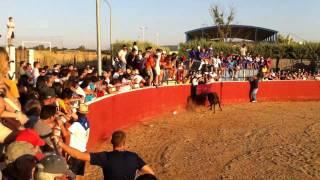 preview picture of video 'Fiesta del Cristo de Saceruela 2011 Toros 5/6 Cucaña'