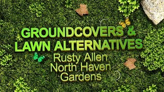 Groundcover and Lawn Alternatives - Sustainable Landscape Series