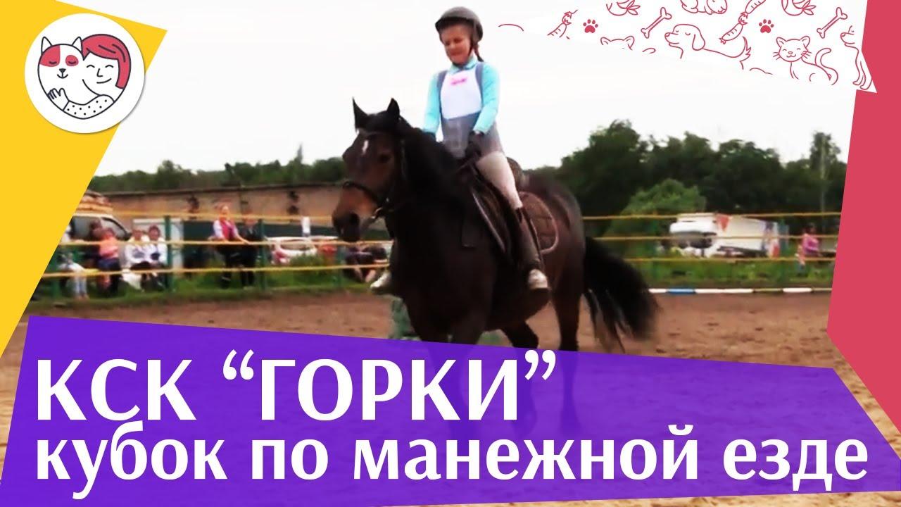 Летний кубок КСК Горки по манежной езде КЮР часть 14 на ilikepet