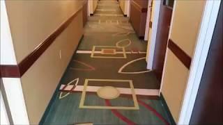 Commercial Carpet Cleaning Gwinnett | Professional Commercial Carpet Cleaner