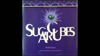 The Sugarcubes - Top of the World {The Carpenters}
