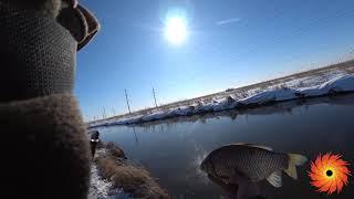 Рыбалка на туры лето 2020 из астаны