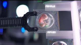 Netflix科幻新作!未來人類滅絕之後,由機器人重生人類《吾乃母親》