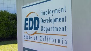 EDD expert answers CA unemployment questions, Bay Area official addresses rise in COVID-19 cases