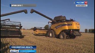 Аграрии Новосибирской области проверяют семена в ходе подготовки к посевной