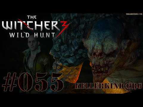 The Witcher 3 [HD|60FPS] #055 Thaler trolling ★ Let's Play The Witcher 3