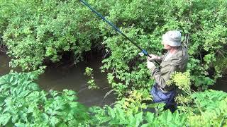 Как поймать хариуса в таежном ручье