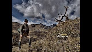 Berghirsch Jagd Im Maltatal - Hunting Mountain Stag In Maltatal