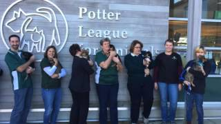 People's Credit Union helps the Potter League for Animals, Fetching Friends Transport Program