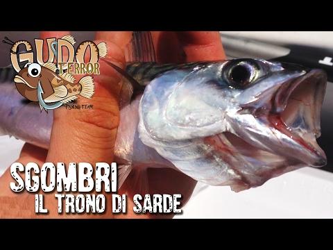 Come diffondersi una filatura nella pesca russa di 3 video
