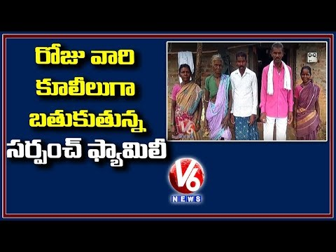 Sarpanch Family Living As Daily Laborers | Inspiring Story Of Bodampalli Sarpanch | V6 Telugu News