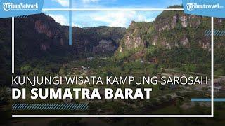 Wisata Kampung Sarosah Harau Sumatera Barat, Informasi Harga Tiket Masuk Terbaru Agustus 2021