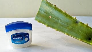 Vaseline & Aloe Vera Gel Natural HAND Face CARE SKIN Brightening Glowing Beauty Life Hacks In Telugu