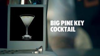 Big Pine Key Cocktail Recipe | Absolut Drinks