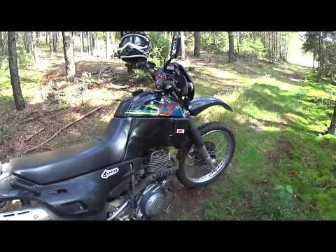 Yamaha xt600 grzybobranie