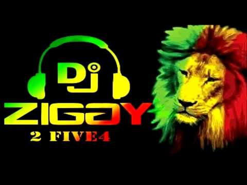 Download Cold Heart Riddim Video mix Dj Ziggy 2five4 MP3