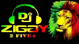 Crown Love Riddim Dj Ziggy 2five4