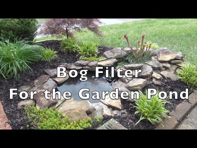 Bog Filter For The Garden Pond