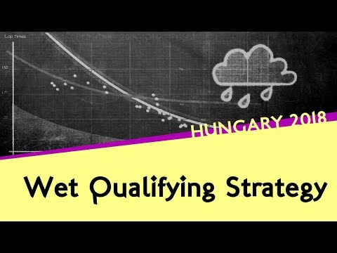 Image: WATCH: Wet qualifying in Hungary explained