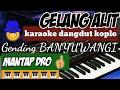 Download Lagu GELANG ALIT - KARAOKE DANGDUT KOPLO - gending using Banyuwangi  KORG PA 1000 VERSIONAL Mp3 Free