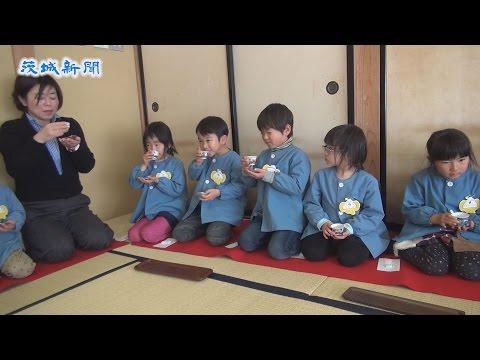 園児が煎茶の作法を体験 高萩市立松岡幼稚園