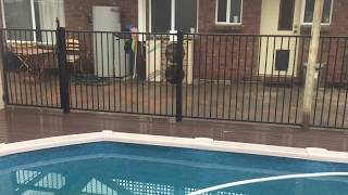 New Courtyard Pool Fence and Deck at Pt Noarlunga - Nathan Thomas Carpenter Builder