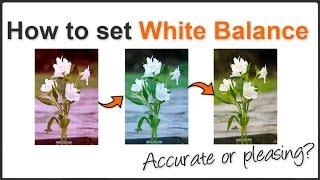 White Balance pt. 2